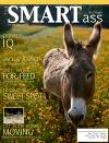 Flash_magazine